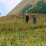 walking-umbrian-mountains-150x150